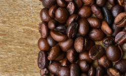 Investigación sobre Cooperativas Cafetaleras