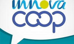 Innovación y Gestión del Conocimiento | Episodio 1