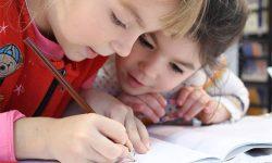 Nuevos espacios del cooperativismo en la educación