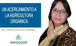 Un acercamiento a la agricultura orgánica